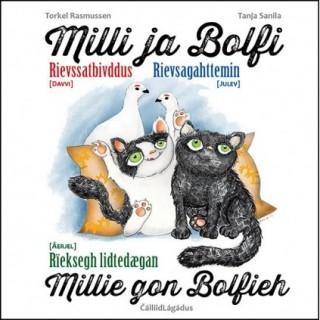Milli ja Bolfi rievssatbivddus/Rievsagahttemin/Rieksegh lidtedægan