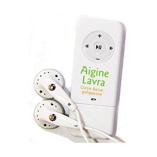 Aigine Lavra - Giesie Bassegohppesne - Lydbok MP3